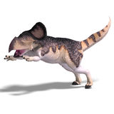 Dinosaur Protoceratops. 3D render with clipping path and shadow over white Royalty Free Stock Photography