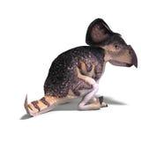 Dinosaur Protoceratops Stock Images