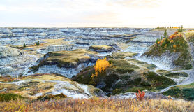 Dinosaur Provincial Park. Drumheller badlands at the Dinosaur Provincial Park in Alberta, where rich deposits of fossils and dinosaur bones have been found. The Stock Images