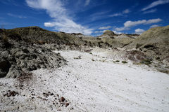 Dinosaur Provincial Park. Landscape featuring the eroded environment from Dinosaur Provincial Park.  Dinosaur Provincial Park is an UNESCO World Heritage Site Stock Image