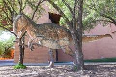 Dinosaur przy nauki i historii muzeum Fort Worth, TX, usa Obrazy Royalty Free