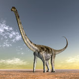 Dinosaur Puertasaurus Royalty Free Stock Photo