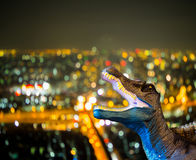 Dinosaur roaring with cityscape. Dinosaur roaring on cityscape view Stock Images