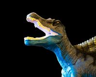 Dinosaur roaring, isolated toy black background Royalty Free Stock Images