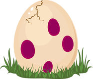 Free Dinosaur S Egg Stock Photos - 26788803