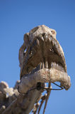Dinosaur's head skull and blue sky, Ischigualasto Stock Image