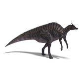Dinosaur Saurolophus. 3D render with clipping path and shadow over white vector illustration