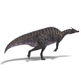 Dinosaur Saurolophus Stock Photo