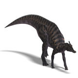 Dinosaur Saurolophus. 3D render with clipping path and shadow over white Royalty Free Stock Images