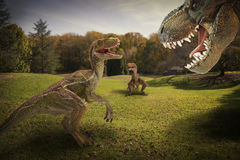 Dinosaur. Scene of the s fighting each Stock Photos