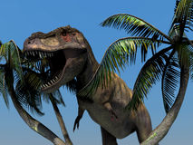 Dinosaur. Scene the dinosaur Executed in 3D Royalty Free Stock Photos