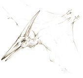 dinosaur schizzo della matita del disegno del dinosauro Fotografia Stock