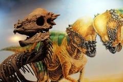 Dinosaur Stock Images