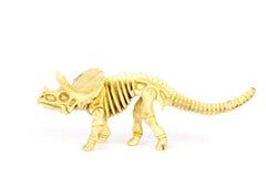 Dinosaur skeleton model isolated on white - Stock Image Stock Photography