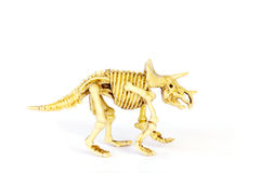 Dinosaur skeleton model isolated on white - Stock Image Stock Images