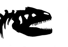 Dinosaur Skeleton (Not Vector) Royalty Free Stock Images