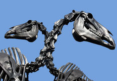 Dinosaur skeleton Stock Images