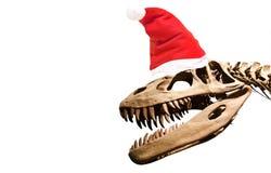Dinosaur skeleton with santa claus hat over white isolated background. Dinosaur skeleton with santa claus hat over white isolated background stock photos