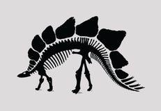 Dinosaur Skeleton Silhouette Stock Image