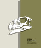 Dinosaur skull Royalty Free Stock Photography