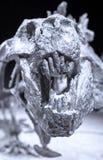 Dinosaur skull Stock Photo
