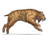 Dinosaur Smilodon Stock Images