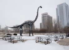 Dinosaur in Snow Stock Images