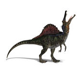 Dinosaur Spinosaurus. 3D render with clipping path and shadow over white royalty free illustration