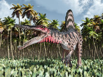 Dinosaur Spinosaurus in the jungle Royalty Free Stock Photos