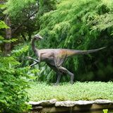 A Dinosaur Statue in Zilker Botanical Garden in Austin Texas. A dinosaur statue in the Prehistoric Park in Zilker Botanical Garden in Austin Texas royalty free stock photos