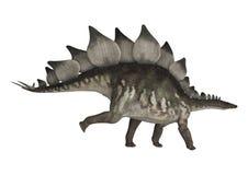 Dinosaur Stegosaurus. 3D digital render of a dinosaur stegosaurus isolated on white background Royalty Free Stock Image