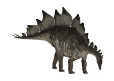Dinosaur Stegosaurus Royalty Free Stock Photography