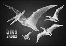 Dinosaur in stippling technique. Graphic flying pterodactyls. Vector dinosaurs isolated on the chalkboard. Animal of the prehistoric period in stippling Stock Photos