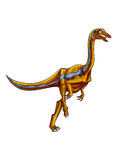 Dinosaur:struthiomimus Royalty Free Stock Images