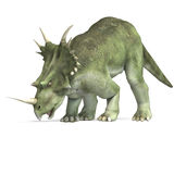 Dinosaur Styracosaurus. 3D rendering with clipping path and shadow over white vector illustration