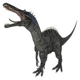 Dinosaur Suchomimus Stock Photography