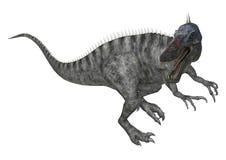 Dinosaur Suchomimus Stock Photos