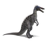 Dinosaur Suchominus. 3D rendering with clipping path and shadow over white Royalty Free Stock Photo