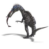 Dinosaur Suchominus. 3D rendering with clipping path and shadow over white Royalty Free Stock Images