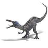 Dinosaur Suchominus. 3D rendering with clipping path and shadow over white Stock Image