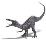 Dinosaur Suchominus Stock Image