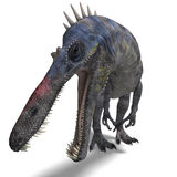 Dinosaur Suchominus. 3D rendering with clipping. Path and shadow over white vector illustration