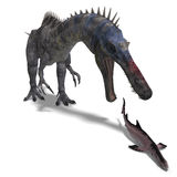 Dinosaur Suchominus. 3D rendering with clipping. Path and shadow over white Royalty Free Stock Image