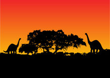 Dinosaur with sunset  Stock Image