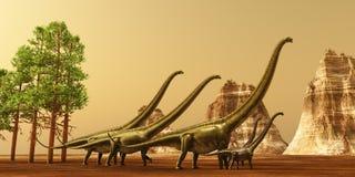 Dinosaur Sunset. A herd of Mamenchisaurus dinosaurs make their way to better feeding grounds during the Jurassic Era Stock Photos