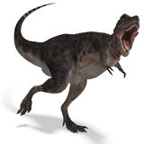 Dinosaur Tarbosaurus. 3D rendering with clipping path and shadow over white Royalty Free Stock Image