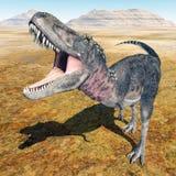 Dinosaur Tarbosaurus Royalty Free Stock Photo