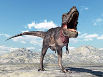 Dinosaur Tarbosaurus Stock Photo
