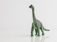 Dinosaur toy isolated on white Royalty Free Stock Photography