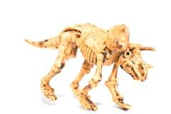 Dinosaur toy Skeleton Royalty Free Stock Photos